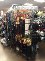 Thrifty Horse Consignment