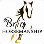 Brio Horsemanship