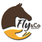 Fly & Co Horse Export
