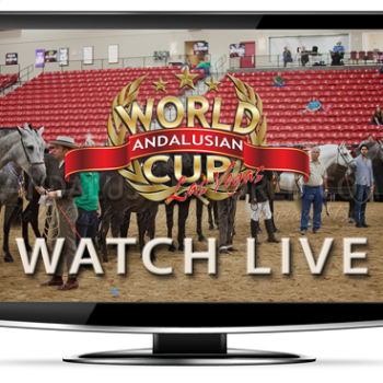 Andalusian World Cup Online