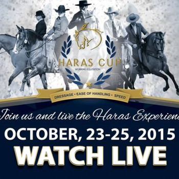 Haras Cup 2015