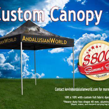 Custom Print Canopy