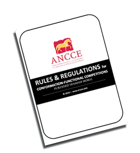 ANCCE Rulebook