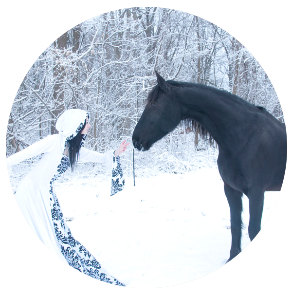 Winter horse fun